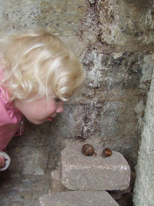 JE-escargots