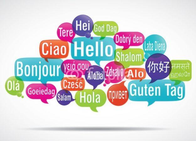 ecole waldorf steiner   les langues vivantes