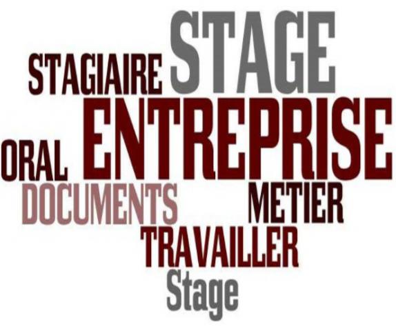 Le stage en entreprise ou dans le monde associatif